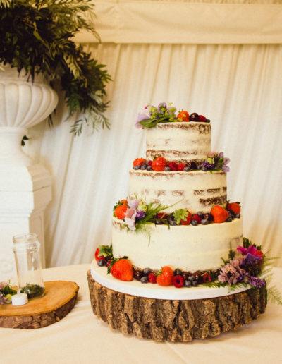 Hannah semi naked wedding cake